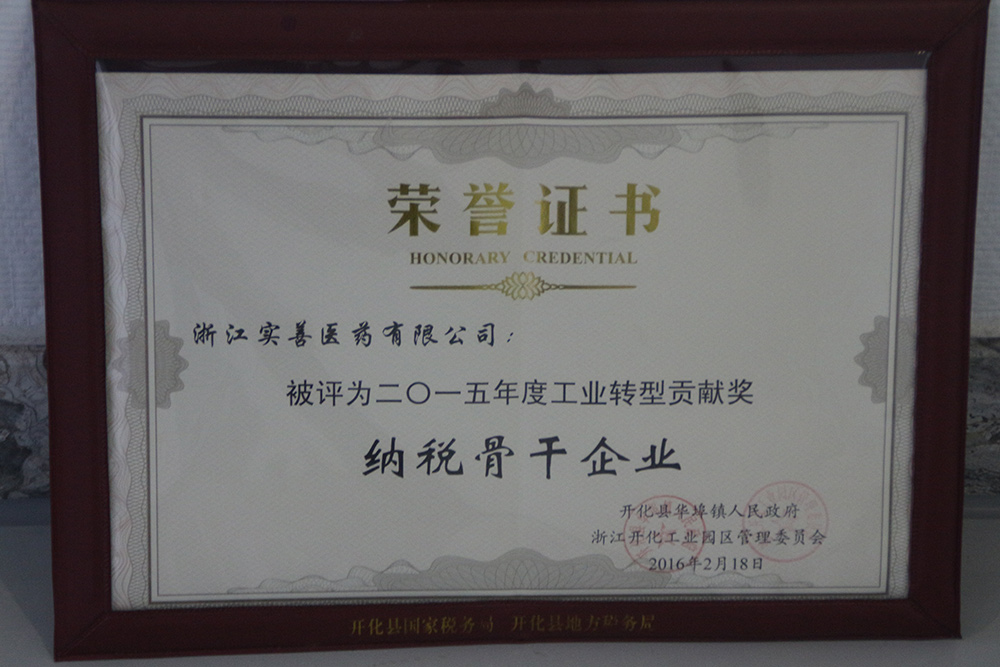 2015年度工业转型贡献奖